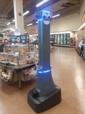 Meet Marty the Patrolling Robot